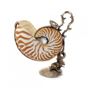 "Nautilus ""Tiger Shell"""