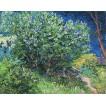 Lilac Bush. By Vincent van Gogh